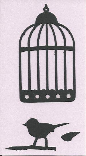 Bird Cage & Bird